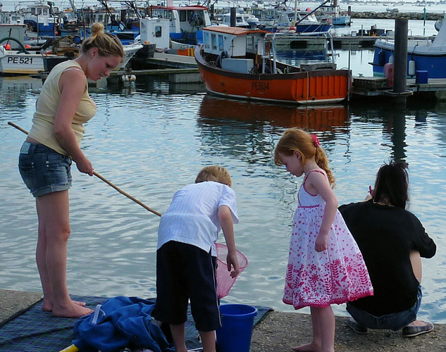 children harbour fishing